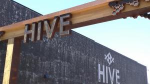 the-hive_750xx2048-1150-0-255